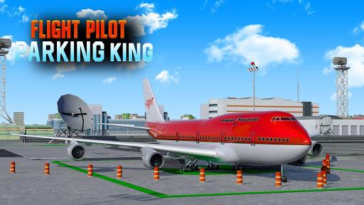 Vol Pilote Parking Roi ss 1