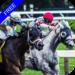 Code Triche Flat Race Horse Racing  – Ressources GRATUITS ET ILLIMITÉS (ASTUCE)